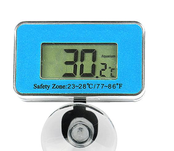 龙鱼缸水温